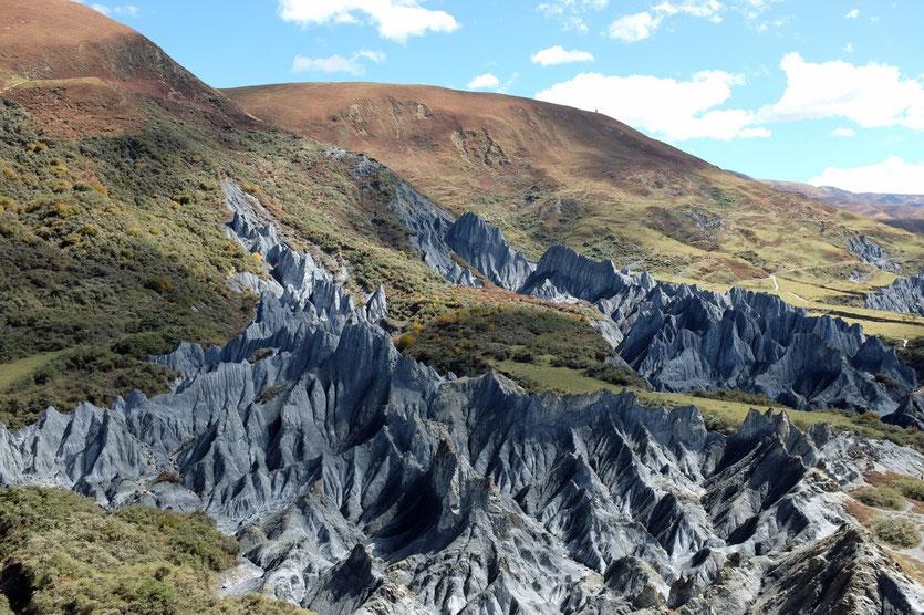 Bamei Metamorphic Stones Forest