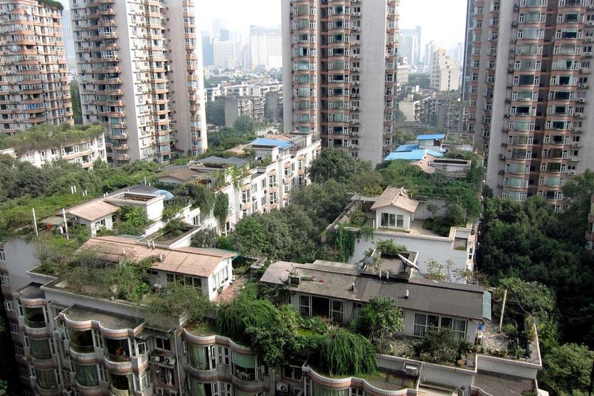 Chengdu Panda Apartment, hotel chengdu