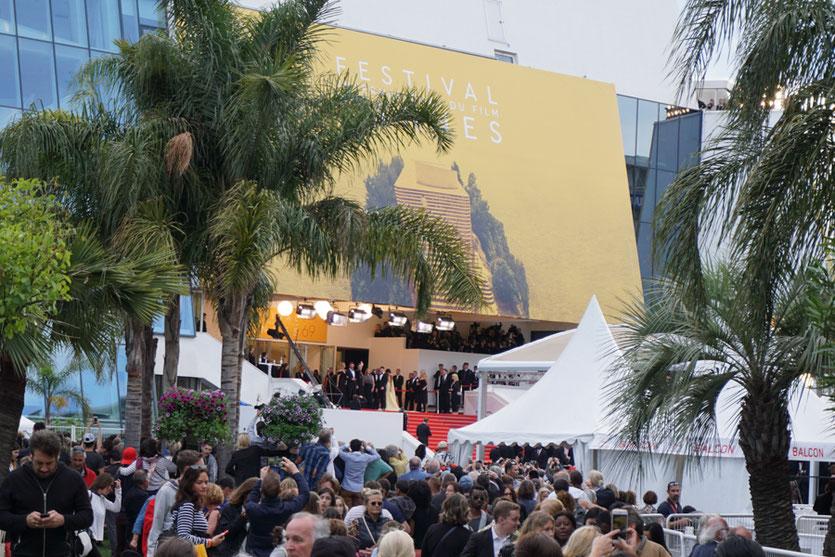 """La foule des grands soirs pour la montée des marches du film """"Money Monster"""" de Jodie Foster avec Julia Roberts et George Clooney - Festival de Cannes 2016 - Photo © Anik Couble"""