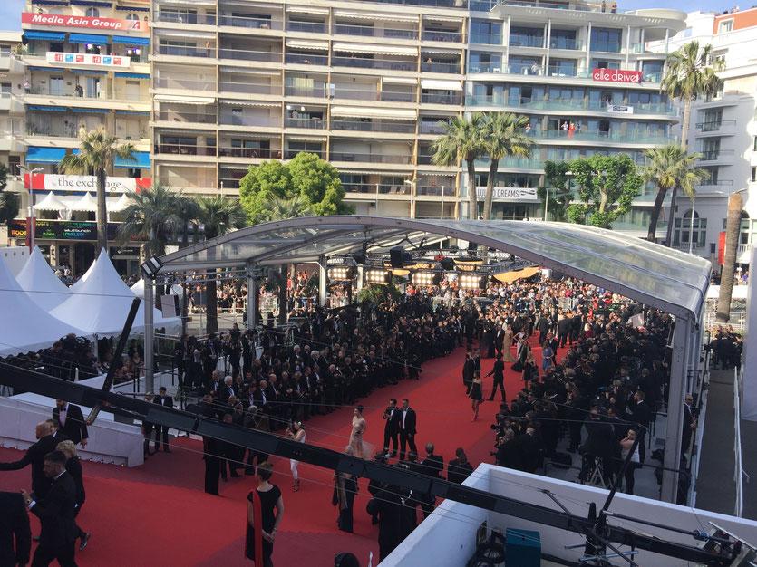 Montée des marches, sous un soleil radieux, lors de  la projection du film The Meyerowitz Stories,de Noah Baumbach - Festival de Cannes 2017 - Photo © Anik Couble