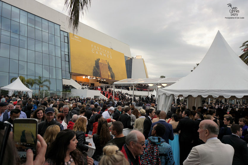 """La foule des grands soirs, pour  la montée des marches du film """"Café Society"""" de Woody Allen - Festival de Cannes 2016 - Photo © Anik Couble"""