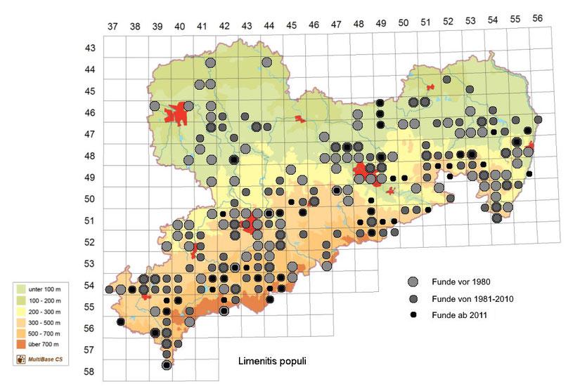 Vorkommen von Limenitis populi in Sachsen
