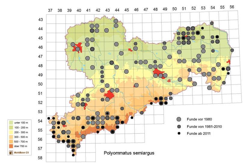 Vorkommen von Polyommatus semiargus in Sachsen ab 2007