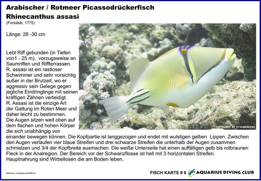 Fisch Karte # 6