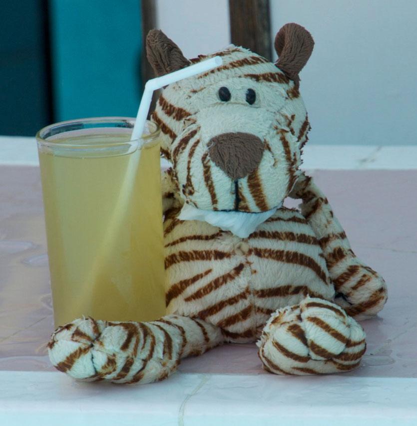 Bei einem Soft Drink an der Poolbar im Urlaub hatte ich eine Idee...