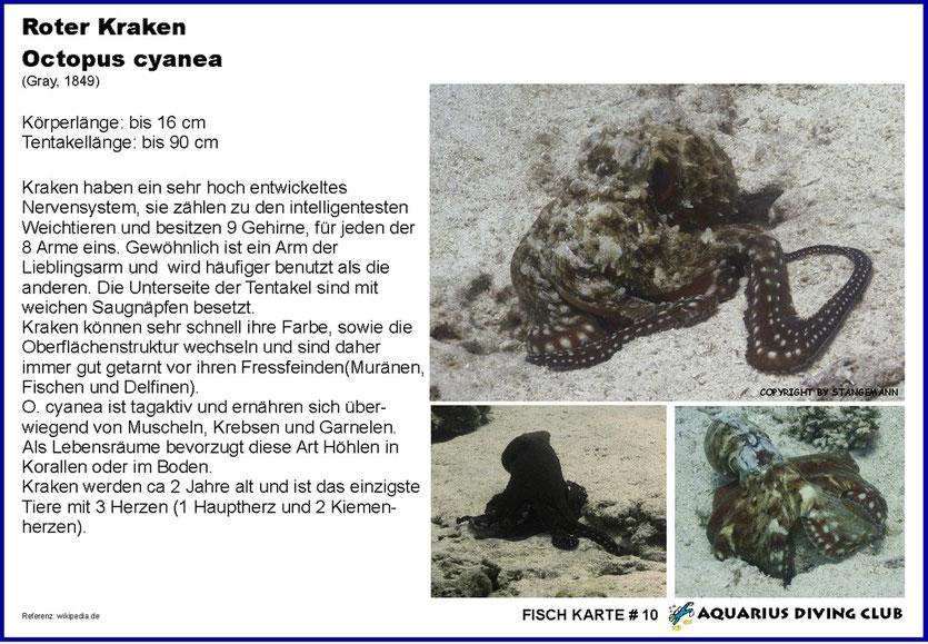 Fisch Karte # 10
