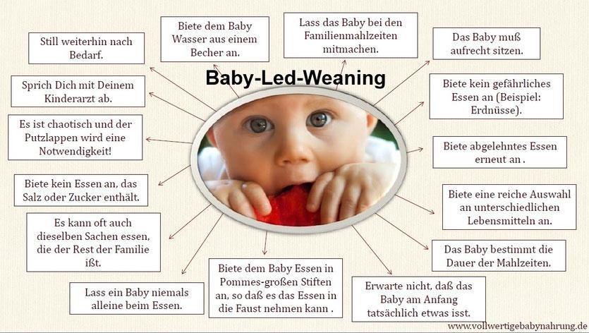 Die 16 wichtigsten Regeln des Baby-Led-Weaning-Ansatzes