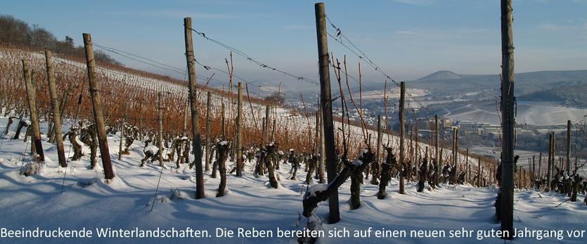 Die Weine für diesen Onlineshop für Ahrwein kommen von der Ahr, die auch im Winter eine traumhaft schöne Landschaft bietet.