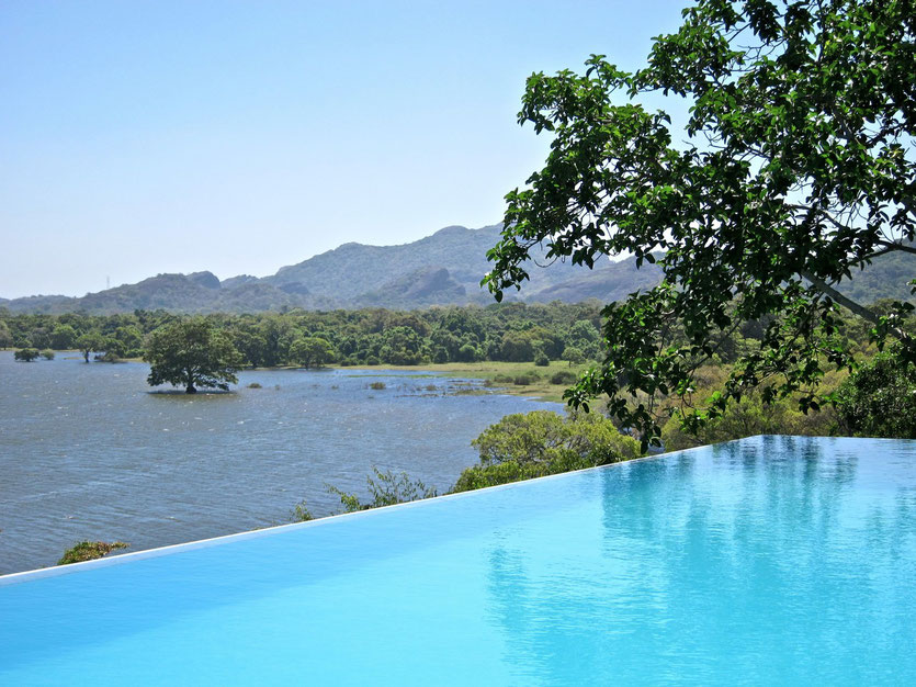 Infinity Pool HERITANCE KANDALAMA Eco-Hotel  Sri Lanka