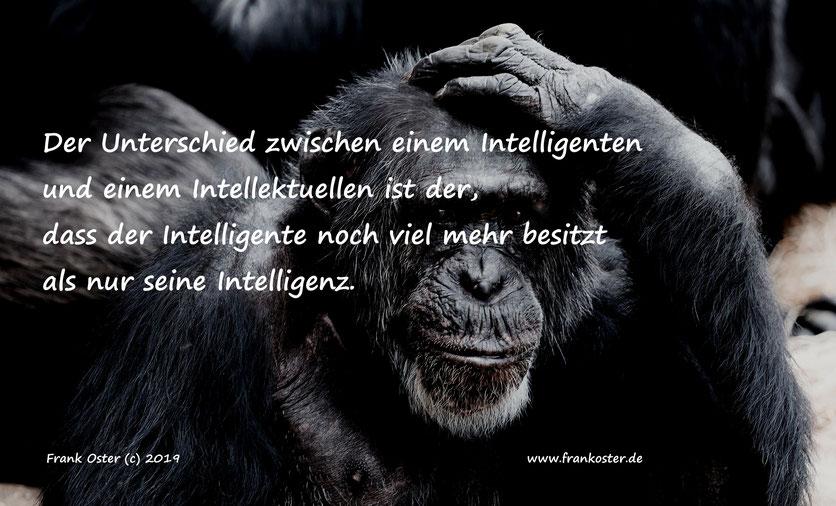 Frank Oster Keynotespeaker #frankosterautor Von Inteligenten und Intellektellen