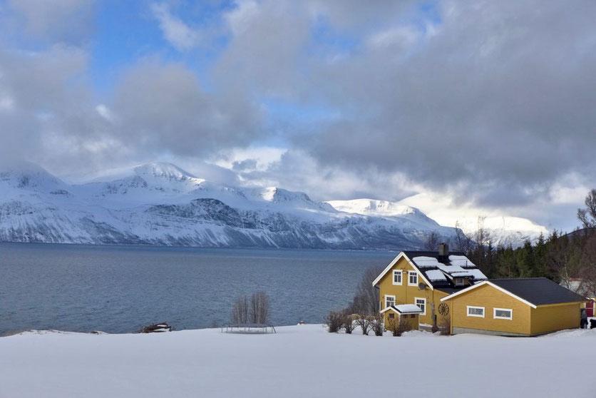 Lyngen Alpen Ullsfjord Lenangen