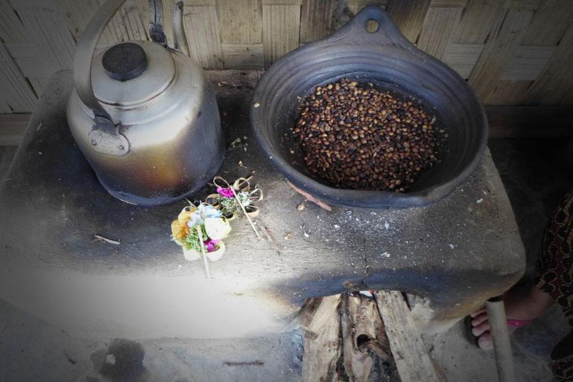 Organic Coffee Plantation  Nord Bali Munduk Hotel