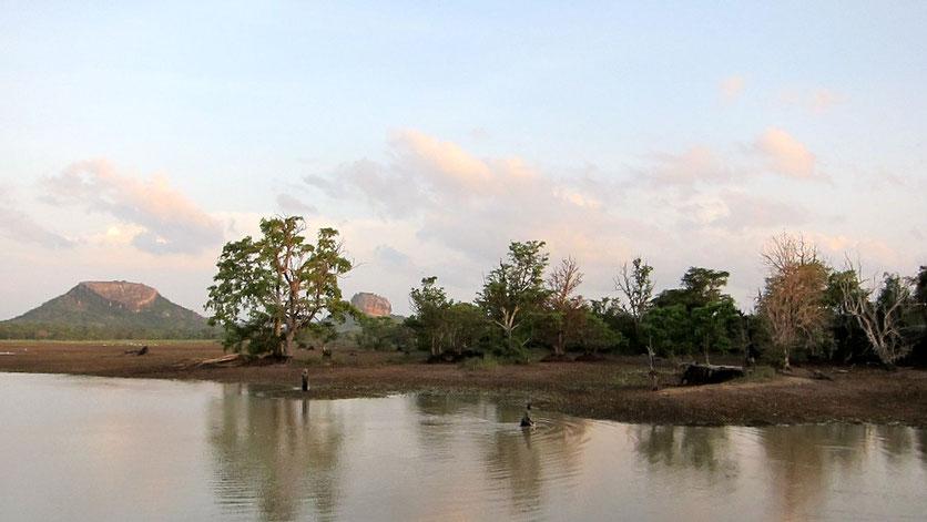 Halmilla Wewa, Sigiriya landscape Sri Lanka