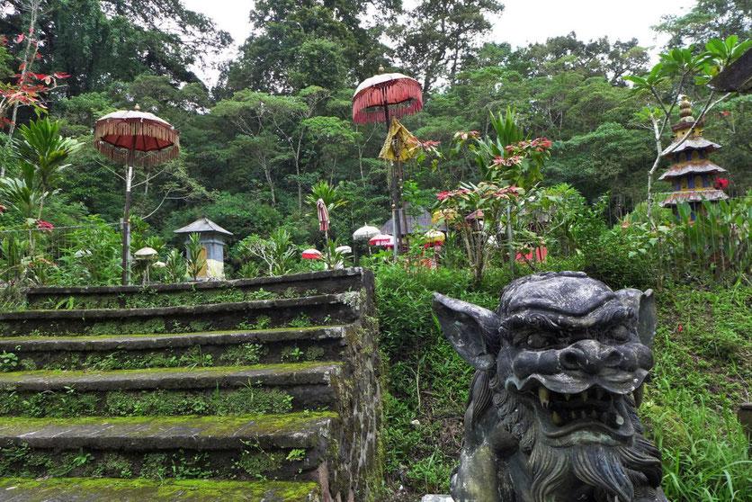 Bali Hochland Munduk