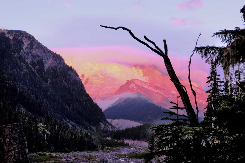 Morgenrot am Mount Rainier - Blick vom White River Campground