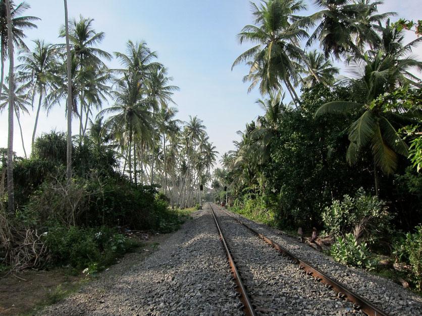 Bentota Railway Sri Lanka