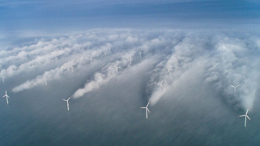 Interaction between wakes on a wind farm (image from wind Action website, http://www.windaction.org).