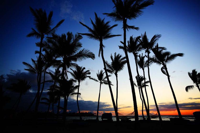 ハワイ州と戸塚区が姉妹都市提携