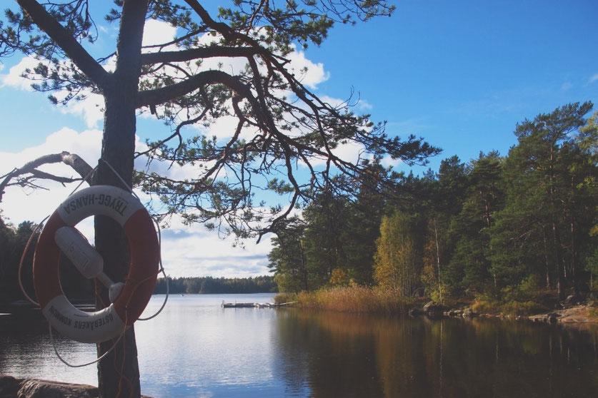 lac parc suède barque forêt arbre automne bigousteppes