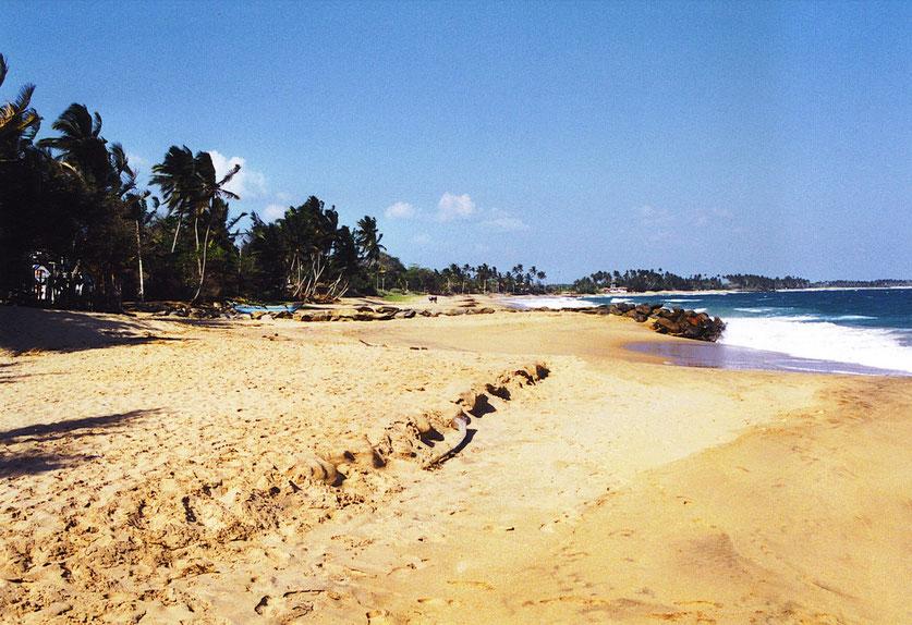 Die Wellen holen und bringen den Sand... (Foto Jörg Schwarz)