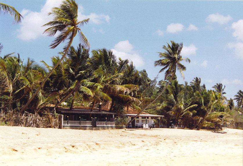 Der Strand 2002! (Foto Jörg Schwarz)