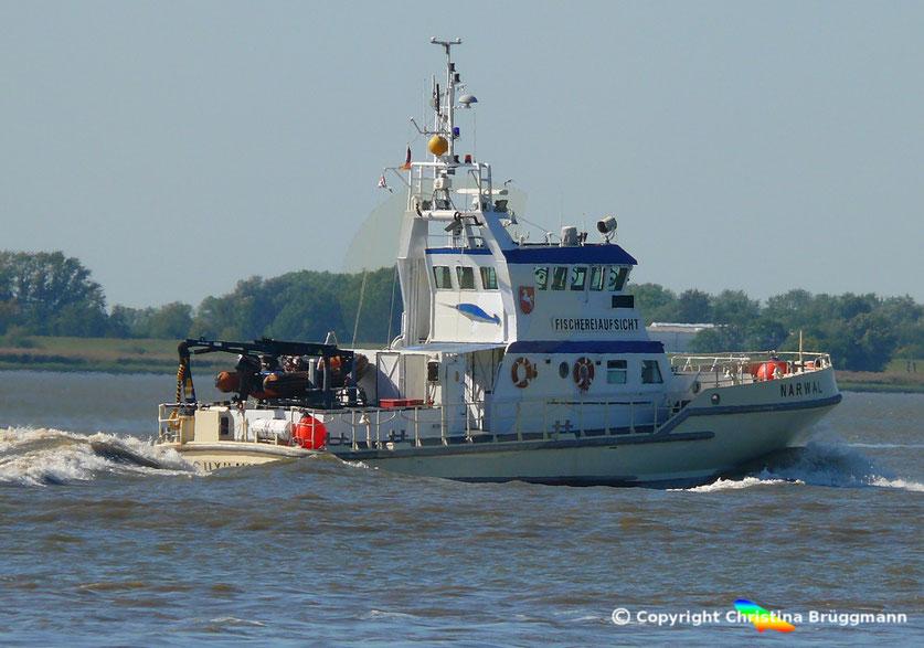 Fischereiaufsicht  NARWAL, Elbe 18.09.2018