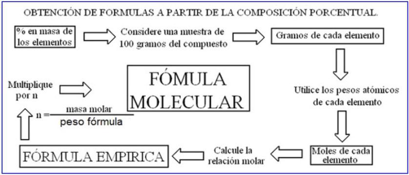 Competencia trimestral 1 - Página web de claicarubio-quil