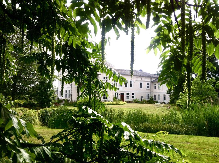 Die Rückseite des Herrenhauses durch die Blätter eines alten Baumes fotografiert.