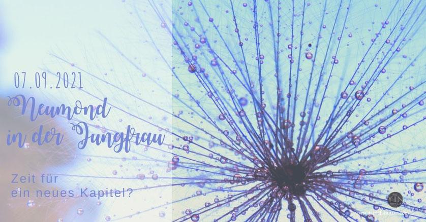 Neumond in der Jungfrau, Zeitqualität, Spiritualität, Alltag, yinprinzip