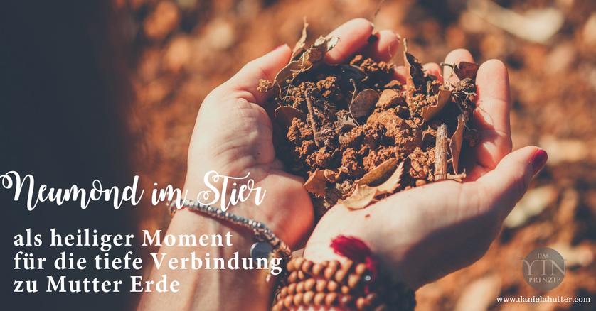 Daniela Hutter bloggt über die Zeitqualität von Neumond im Stier  und Tagesenergie am 05.05.2019