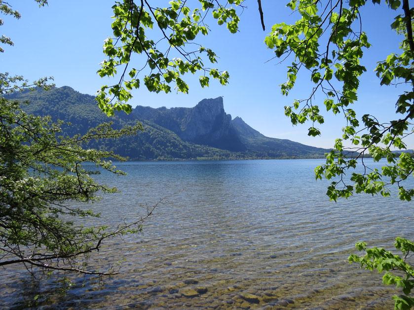 Urlaub in Mondsee_Unterkunft