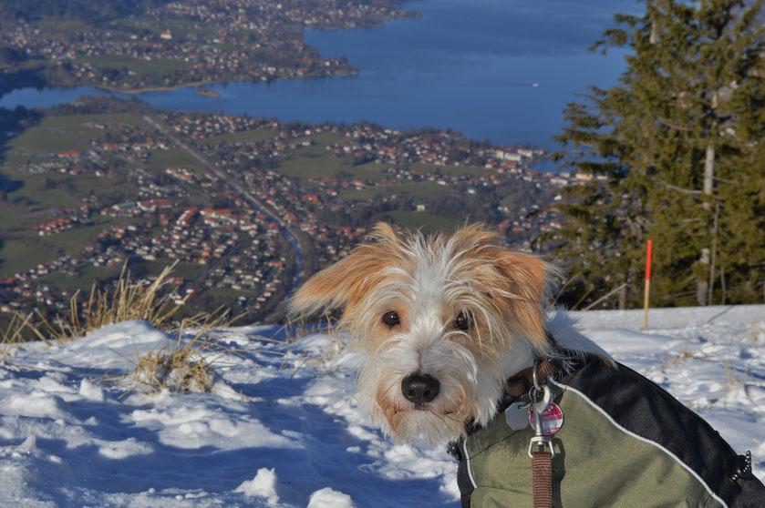 Wandern auf den schneebedeckten Bergen um den Tegernsee