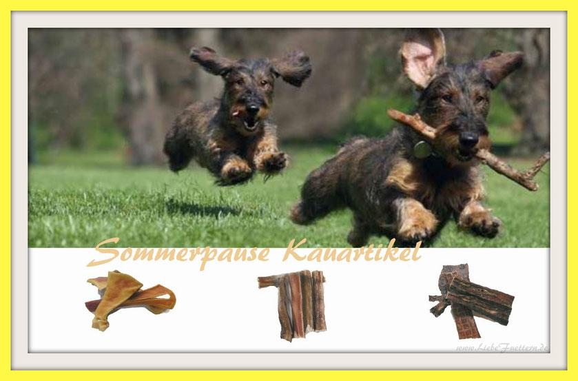 Reico Kauartikel für Hunde. Auch in diesem Jahr werden wir unsere naturbelassenen Trockenfleischspezialitäten Rinderstrossen, Rinderkopfhaut und Dörrfleisch in die Sommerpause schicken.