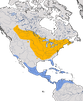 Karte zur Verbreitung des Baltimoretrupial (Icterus galbula)