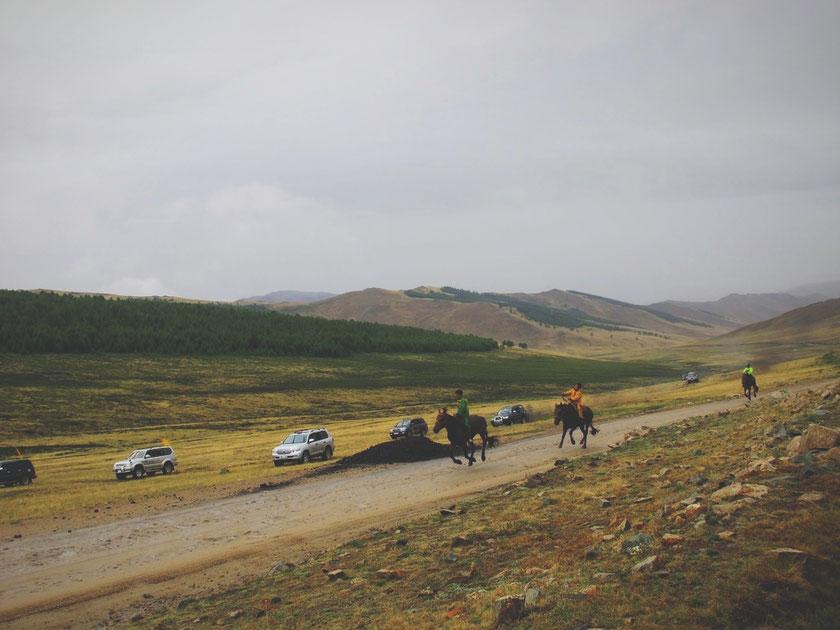 bigousteppes mongolie naadam course chevaux nomades