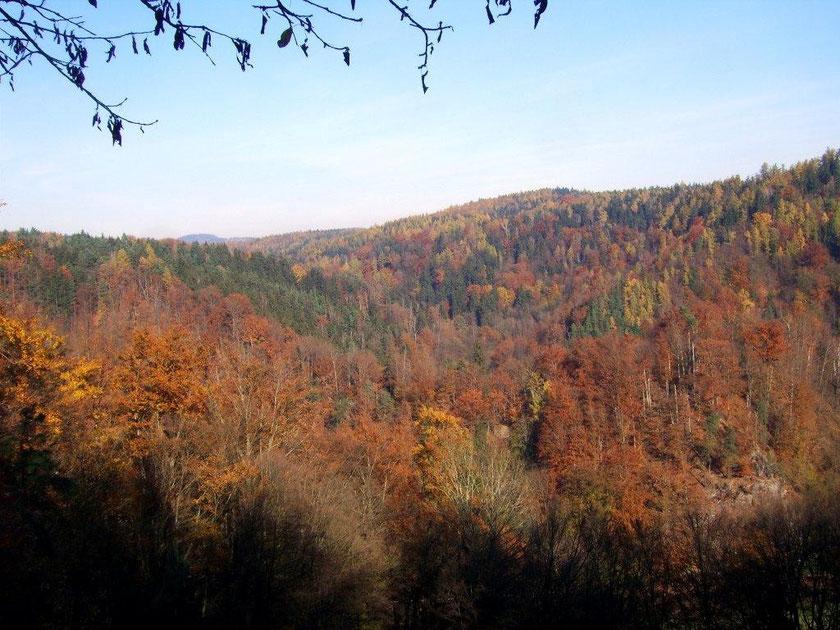 Blick zum Schwarzbachtal
