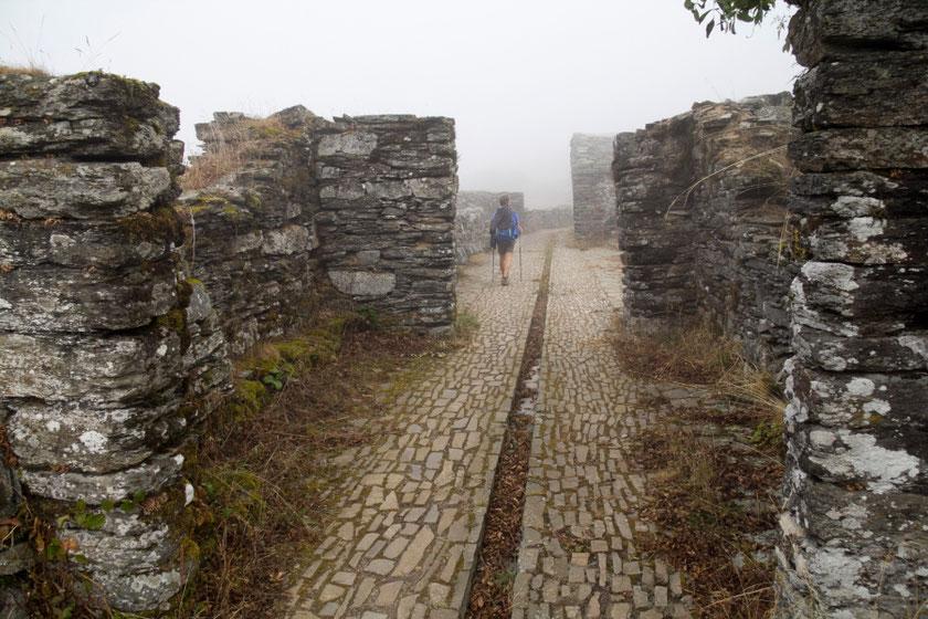 Seno vienuolyno griuvėsiai Primityviajame (Pirmykščiame) kelyje / Foto: Kristina Stalnionytė