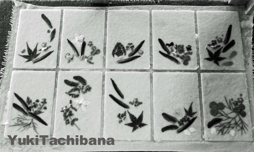 ノスタルジック   立花雪 YukiTachibana