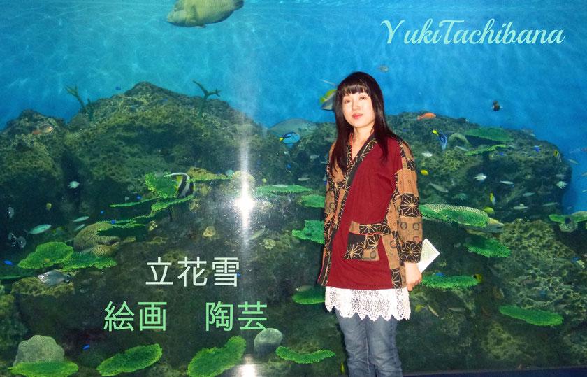 美術家 立花雪(たちばな ゆき) YukiTachibana 現在ネットでの活動はあおい夢工房のホームページとgoogle+のみです。その他のSNS,fb,Twitterでの発信はしていません。                         年に一度武州熊谷ひみこ窯にて穴窯(薪窯)にて焼成をしています。