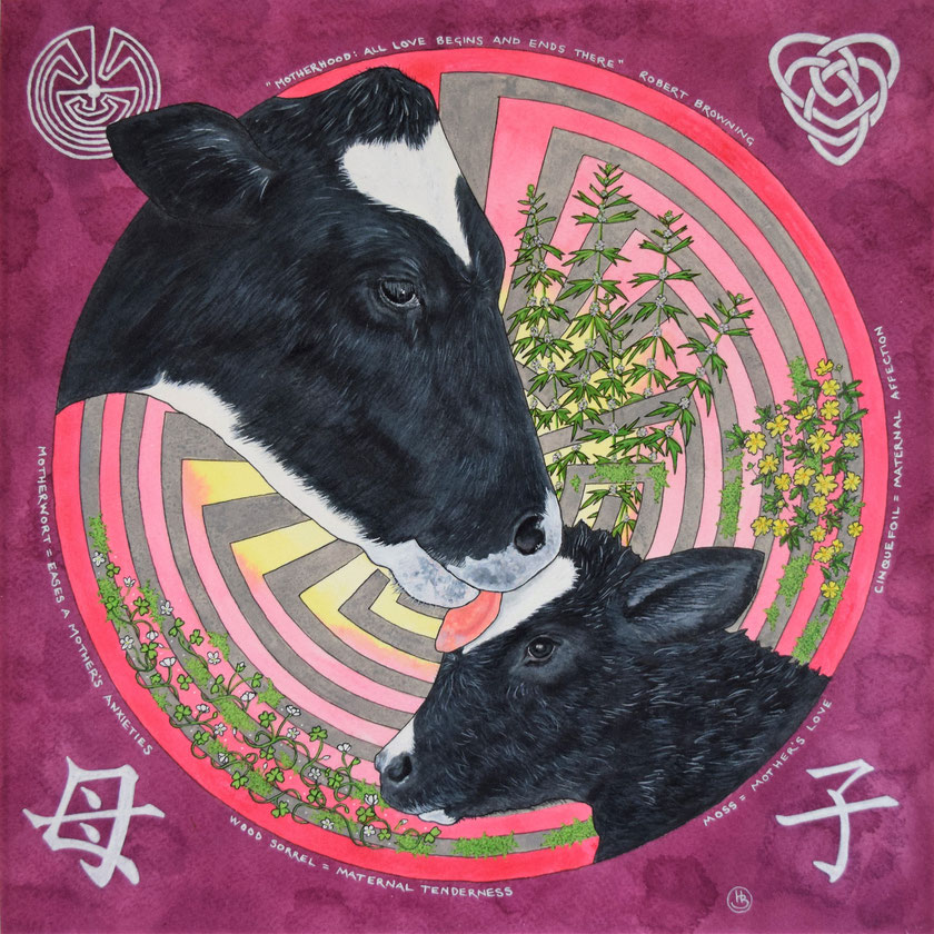 Painting, acrylic. Dairy cow and calf, bonding. Flowers with ancient meanings of motherhood. Anti-dairy.