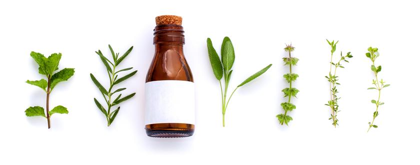 Heilkräuter für Therapiezwecke und Heilpflanzenkunde