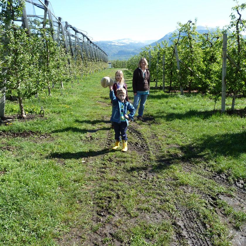 Wanderung durch die Obstgärten