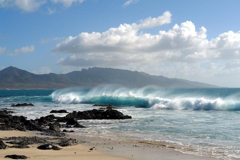 Fuerteventura, 6.2.2009