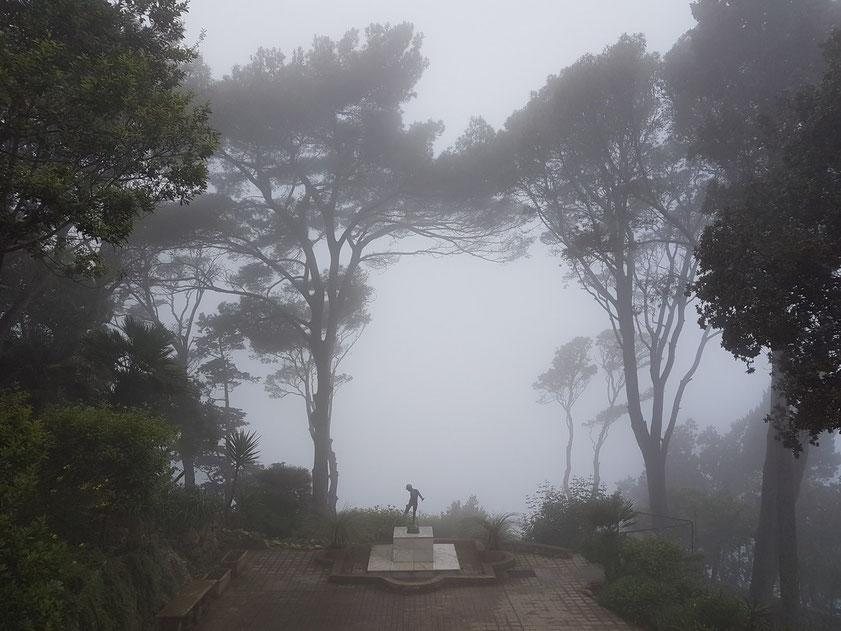 Blick vom Eingang der Villa Lysis in den Garten