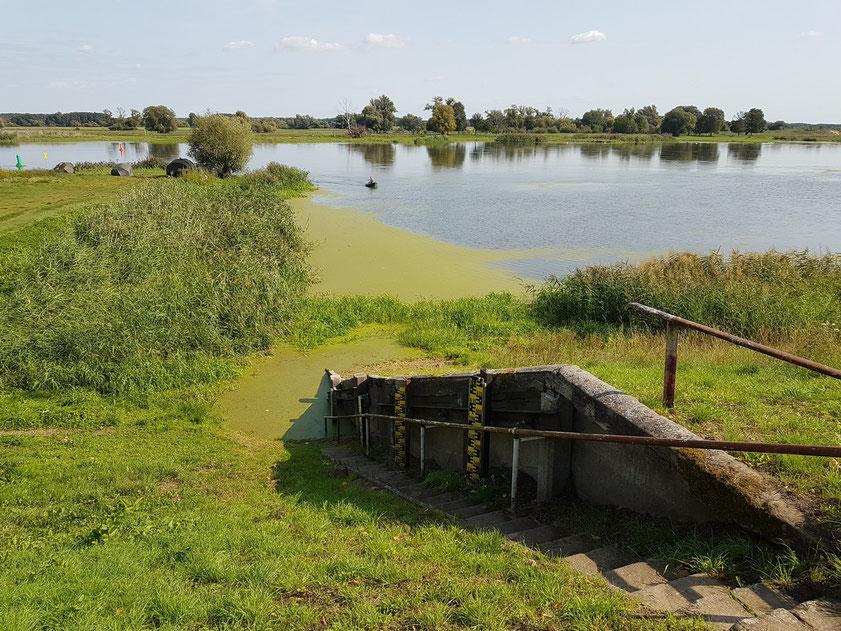 Die Oder bei Groß Neuendorf, Blick von der Hafenstraße. Pegel für die häufigen Hochwasserstände