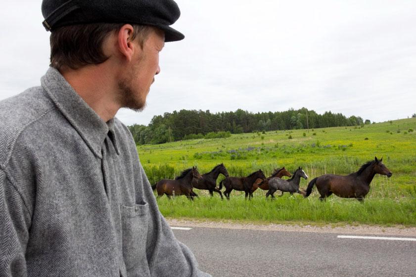 Su žemaitukais bėga pakeliui besiganantys žirgai - Mindaugas Karčemarskas žiūri į bėgančius žirgus