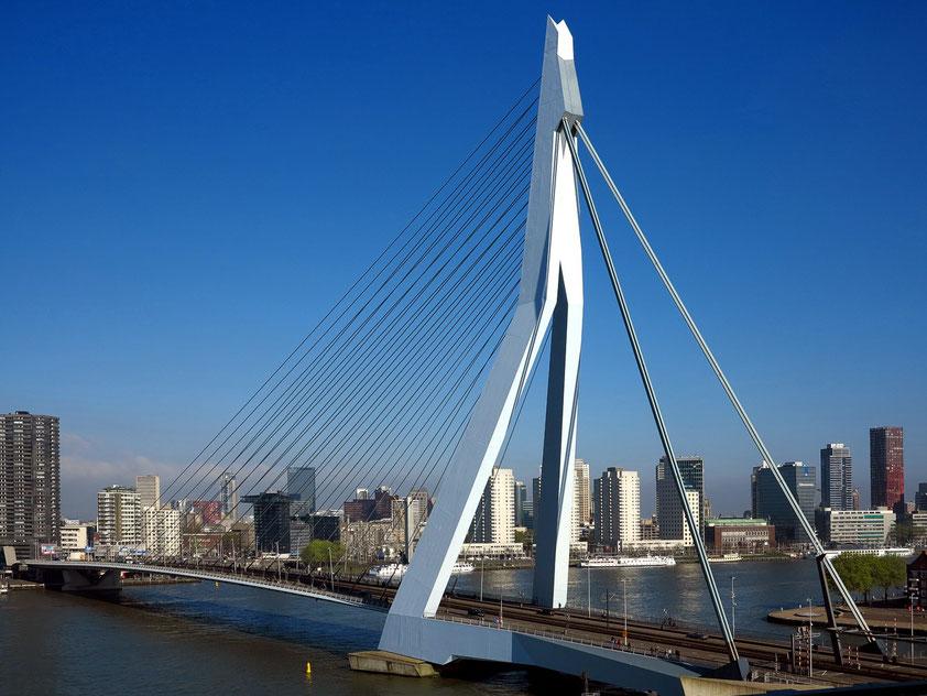 Erasmusbrücke über die Nieuwe Maas. Blick vom 7. Stock von De Rotterdam