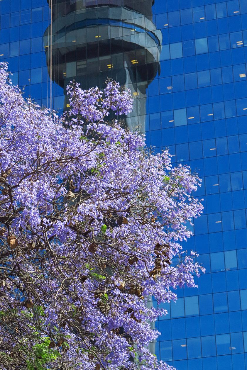 Boulevard Liber Bernardo O'Higgins, Spiegelung des Fernsehturms Torre Entel, eröffnet 1974, 127,4 m Höhe, Aussichtsplattform in 83 m Höhe