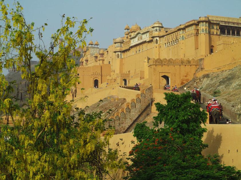 Das Fort Amber war der Fürstenpalast der Kachchwaha-Dynastie, bevor Jaipur zur Residenzstadt wurde.