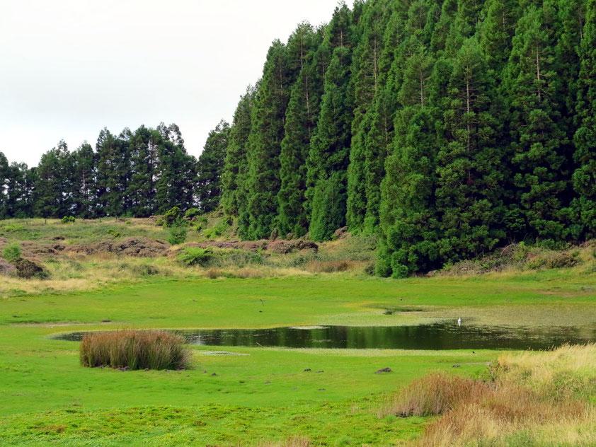Lagoa do Negro neben dem Eingang zur Gruta do Natal